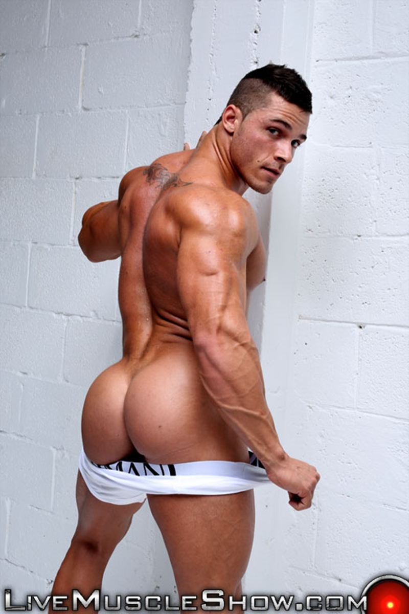 LiveMuscleShow-Joey-van-Damme-livemuscle-muscled-man-livecam-webcam-musclehunk-cam-male-live-cams-gay-muscle-chat-big-dicks-003-tube-download-torrent-gallery-sexpics-photo